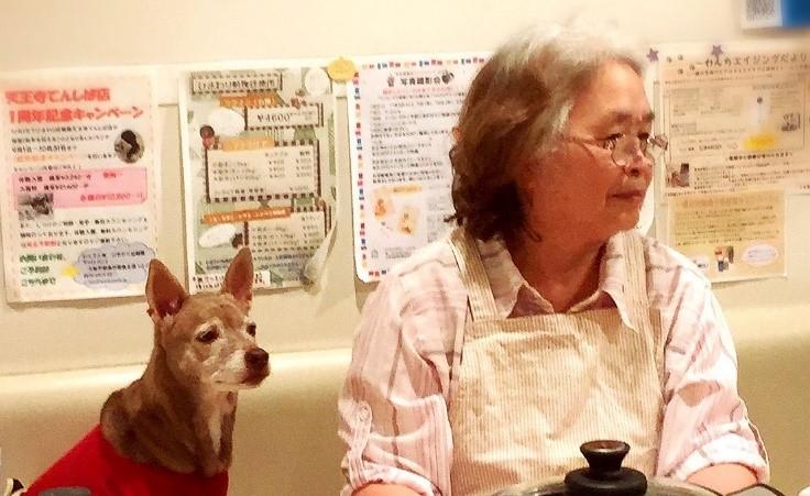 ジンジン婆ちゃんの元気わんこご飯のお話1